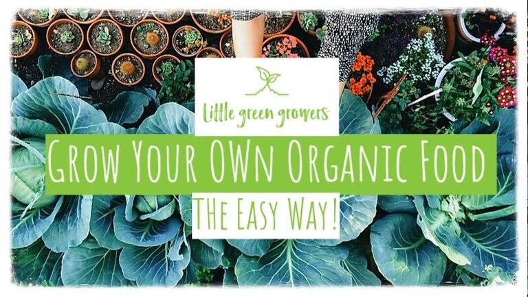 little green growers logo 768x432